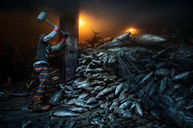 overfishing-south-china-sea.adapt.1900.1