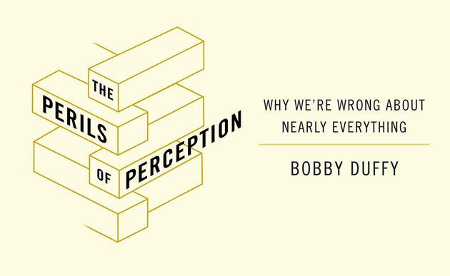 Perils of Perception