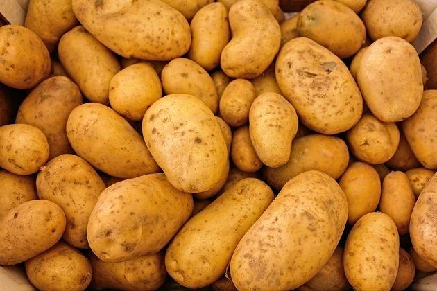 potato-valley