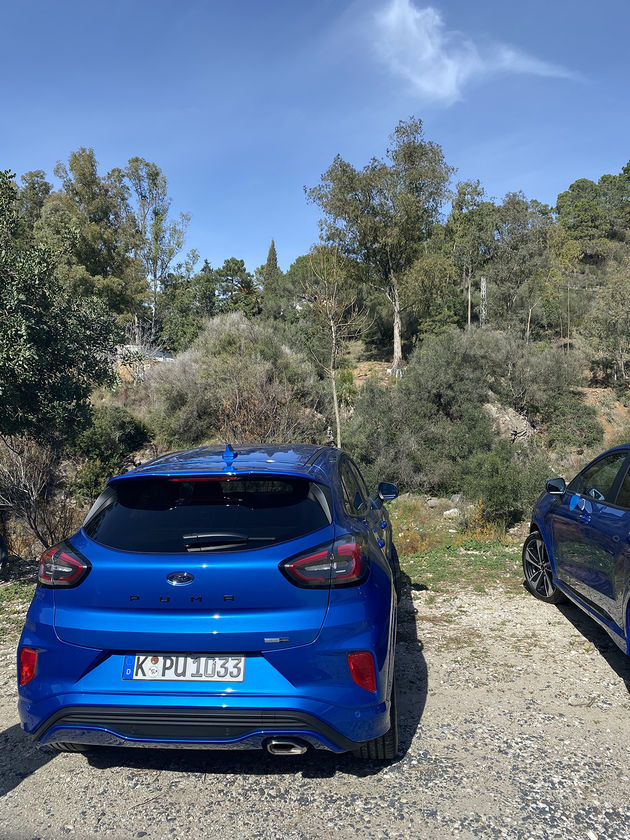 Puma-Ford