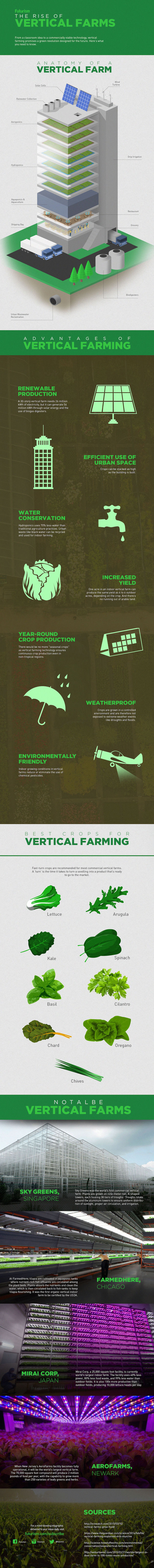 Rise-of-Vertical-Farms_v4-1