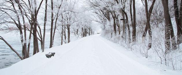 sneeuw-weg