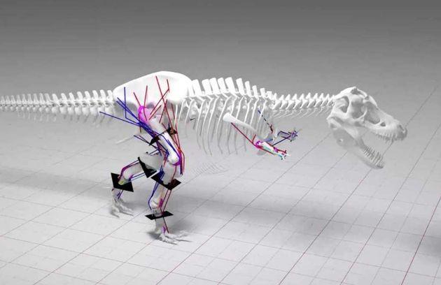t-rex-botten