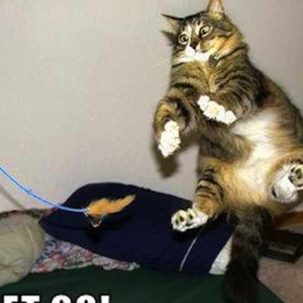 $30 miljoen opgehaald door LOLcats en het FAIL Blog