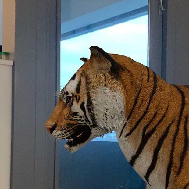 Heb jij de 3D-dieren van Google al in huis gespot?