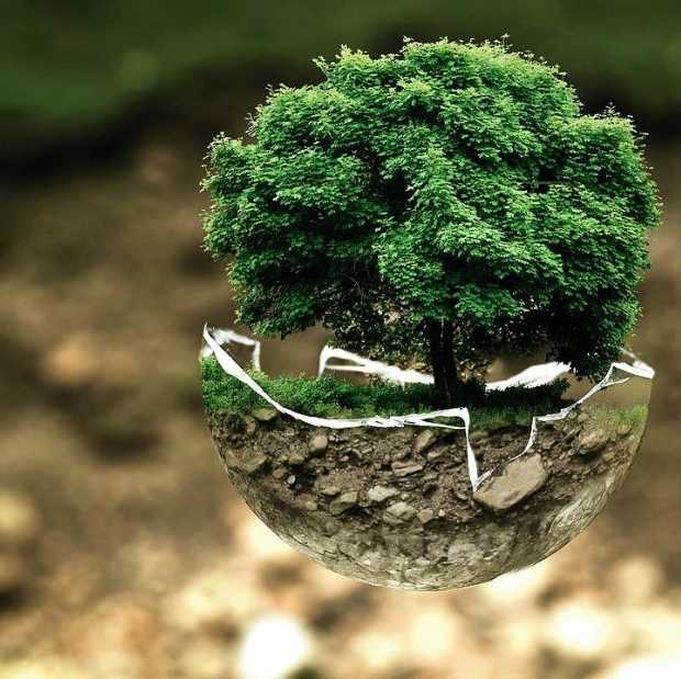 Amazon-baas zet 10 miljard dollar in tegen klimaatverandering