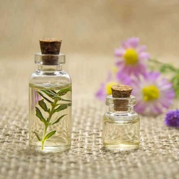 Deze AI zou wel eens je nieuwe favoriete parfum kunnen bedenken
