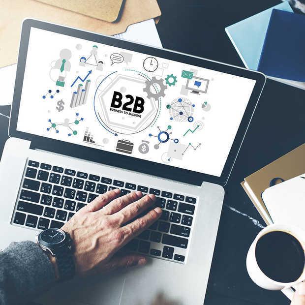 De 4 dingen die succesvolle B2B webshops met elkaar gemeen hebben