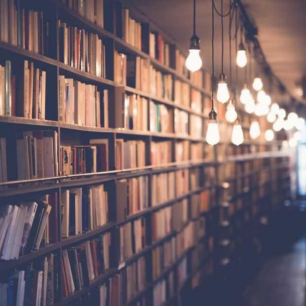 Steeds meer Nederlanders gebruiken de digitale bibliotheek
