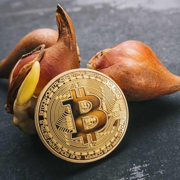 Cryptovaluta krijgt weer een flinke knauw vandaag