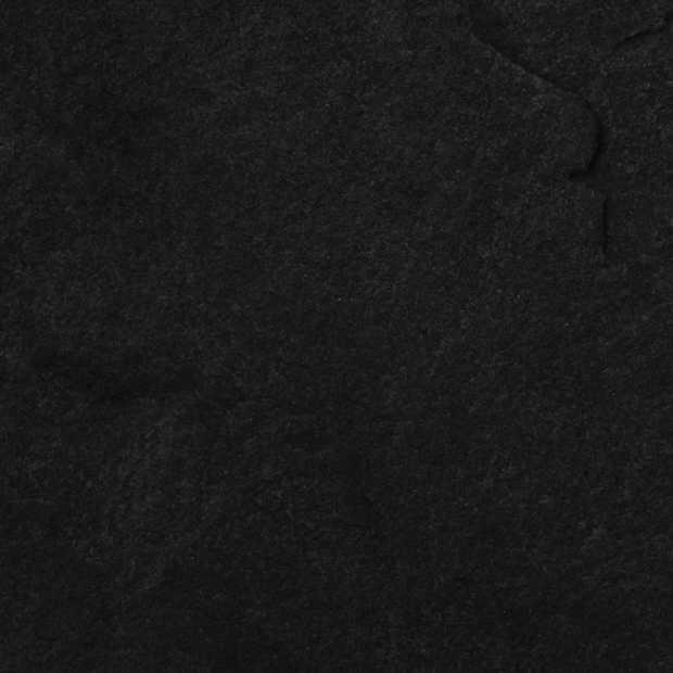 Black Out Tuesday: de muziekindustrie gaat vandaag op zwart