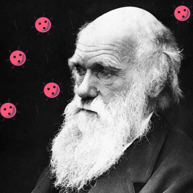 Wat zou Darwin zeggen over het coronavirus?