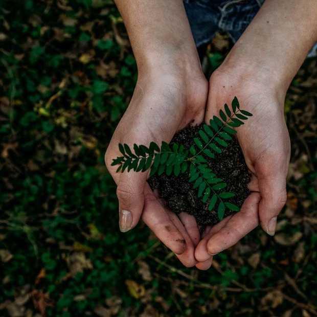 Het is weer Earth Day vandaag! Het thema van dit jaar is 'climate action'