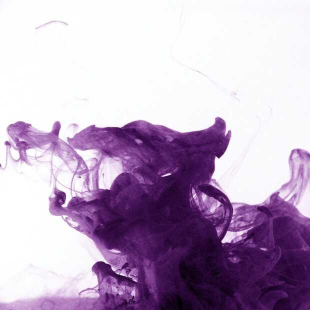 Vandaag is het 'Purple Day': lancering EpilepsieNL