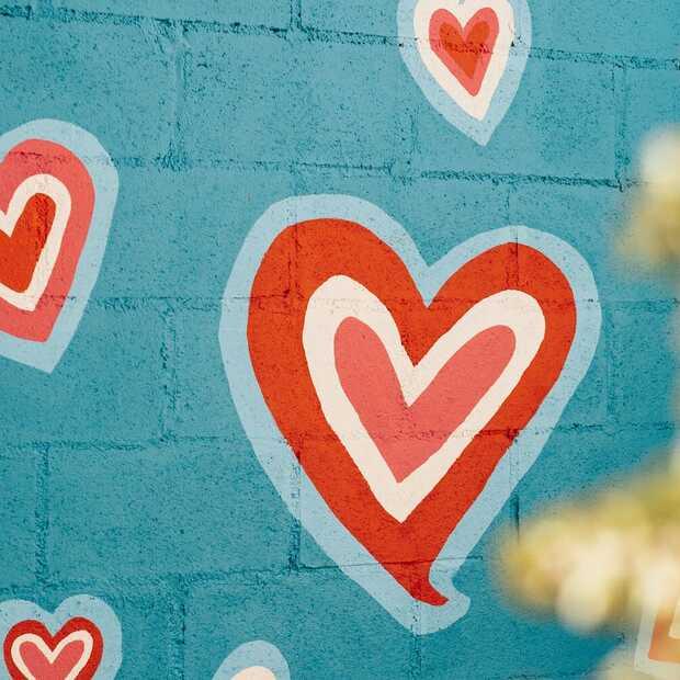 Lang leve de liefde versus First Dates: wat maakt datingshows zo leuk?