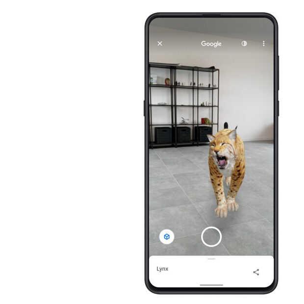 Nieuwe augmented reality-dieren beschikbaar op Google
