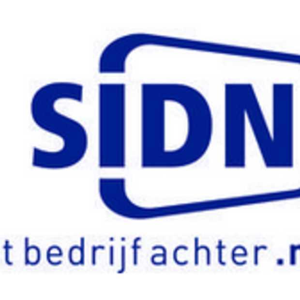 Groei van aantal .nl-domeinnamen nam in 2012 sterk af