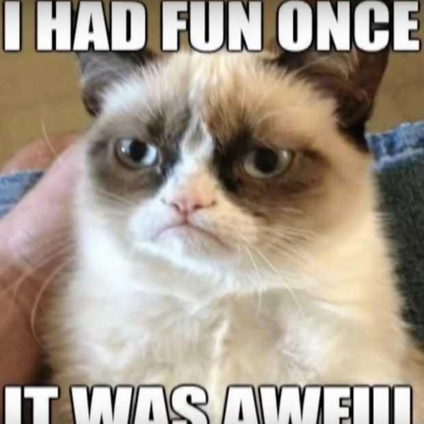 De bekendste kat ter wereld, Grumpy cat, is overleden