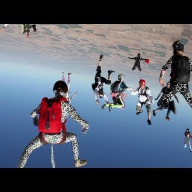Harlem Shake - Skydive Edition