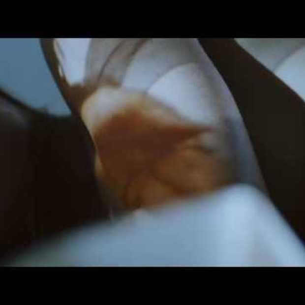Trailer IFFR 2009