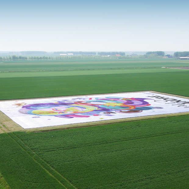 Kunstwerk voor André Kuipers vanuit de ruimte te zien
