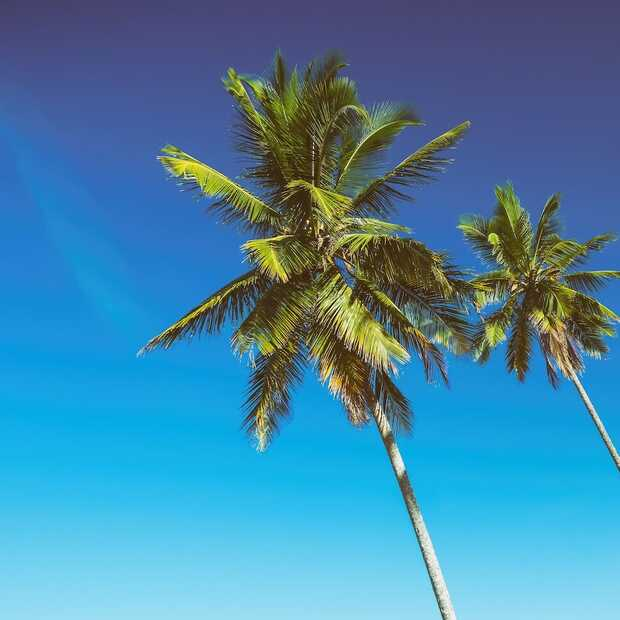 Binnenkort op vakantie? Geen paniek, je kunt nog steeds op reis!