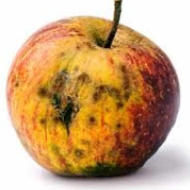 Massa ontslag bij Apple