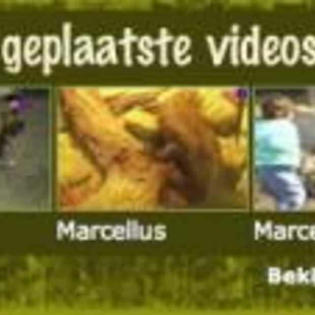 Mijnzoo.nl nieuwe community bij AD