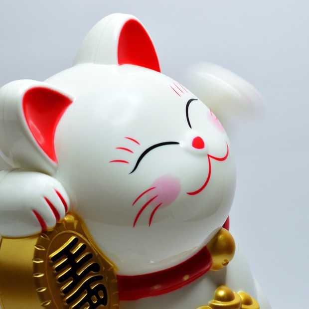 Chinese budgetwinkel Miniso komt naar Nederland