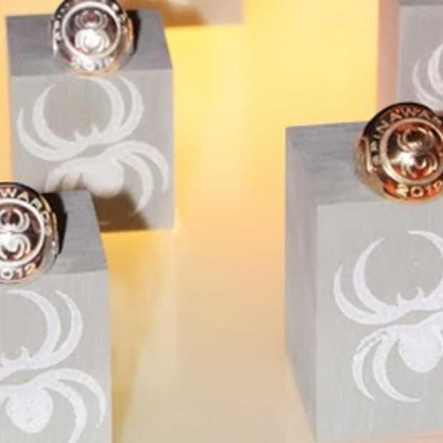 Nominaties SpinAwards 2014 bekend