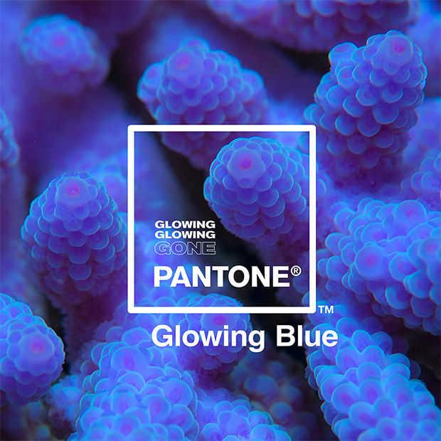 Adobe en Pantone brengen speciale kleurenrange uit