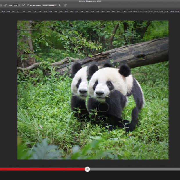 Photoshop tutorials van het Wereld Natuur Fonds