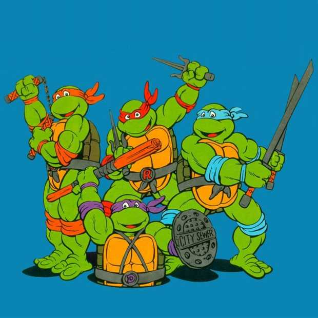 Nieuwe Turtles game van Platinum Games?