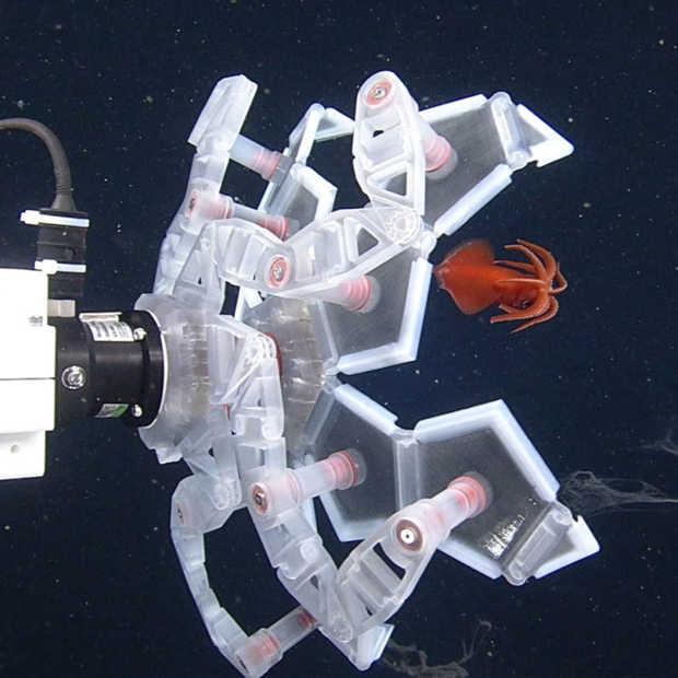 Deze onderwater-Pokébal vangt de meest zeldzame dieren
