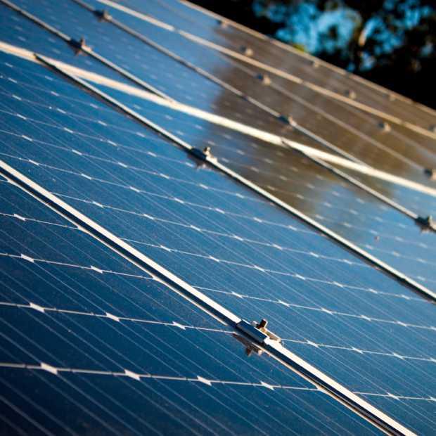 Eerste bio-zonnepaneel moet luchtverontreiniging Londen tegengaan