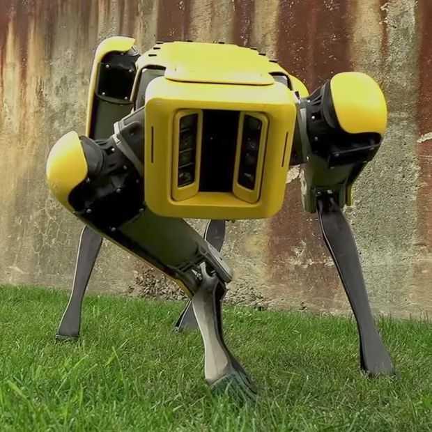 SpotMini robot van Boston Dynamics: wel gaaf, niet meer eng