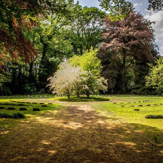 Is jouw tuin alweer klaar voor een beetje zon? Zo maak je jouw tuin lenteklaar!