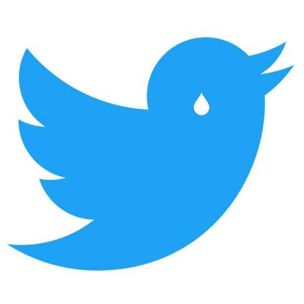 Twitter's angst voor GDPR-boete kost gebruikers hun accounts