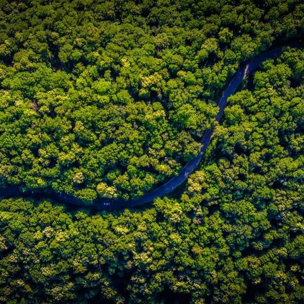 'Stukken Amazone-regenwoud verkocht via Facebook'
