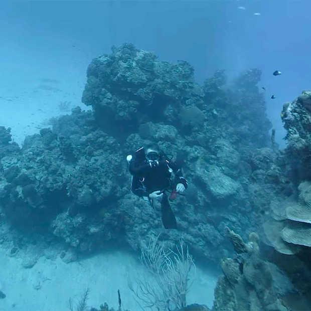 Met Virtual Reality een kijkje nemen op de bodem van de zee