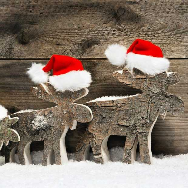 Een vrolijk kerstfeest voor alle lezers, fans en followers
